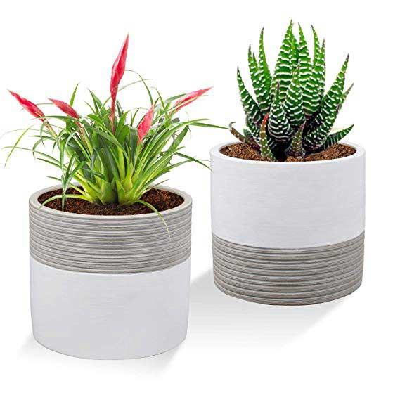Modern Cement Cactus Flower Aloe Snake Plant Planter Container