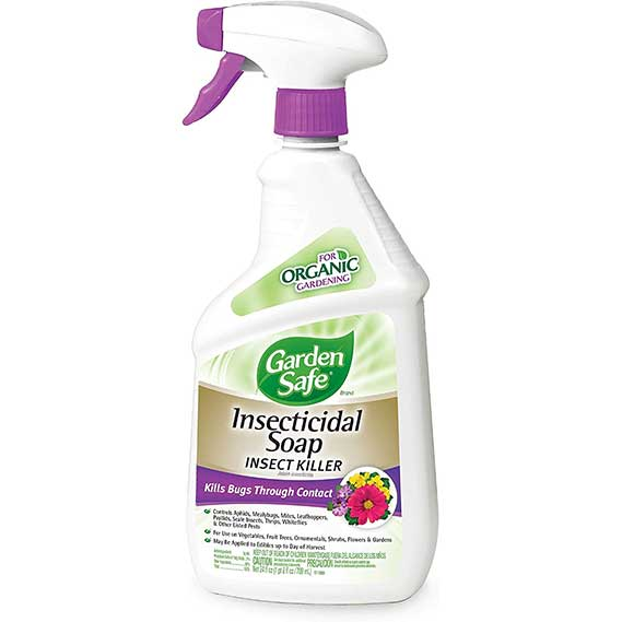 Garden Safe Brand Insecticidal Soap Insect Killer